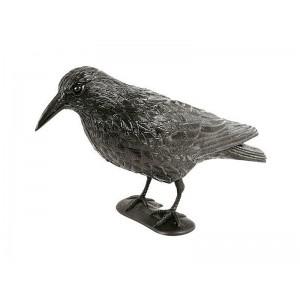 Σκιάχτρο μικρών πτηνών (ΠΕΡΙΣΤΕΡΙΑ, ΚΟΤΣΥΦΙΑ, ΑΙΓΙΘΑΛΟΙ) υπό τη μορφή ΚΟΡΑΚΑ σε φυσικό μέγεθος