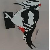Σκιάχτρο Δρυοκολάπτης για απώθηση Δρυοκολαπτών
