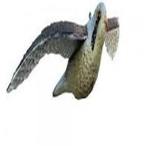 Αδιάβροχο ΓΕΡΑΚΙ με άνοιγμα φτερών 54 εκ. διώχνει πουλιά