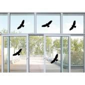 Αυτοκόλλητη ετικέτα για προστασία παραθύρων / γυαλιών από σύγκρουση με πτηνά  -  55х25 см.